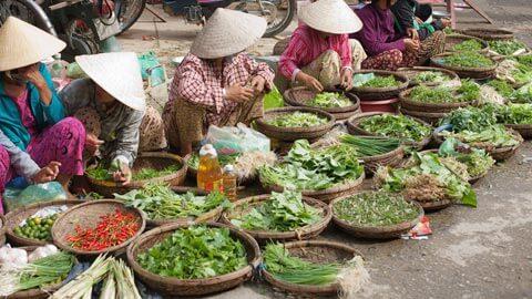 Vietnamese (Northern)